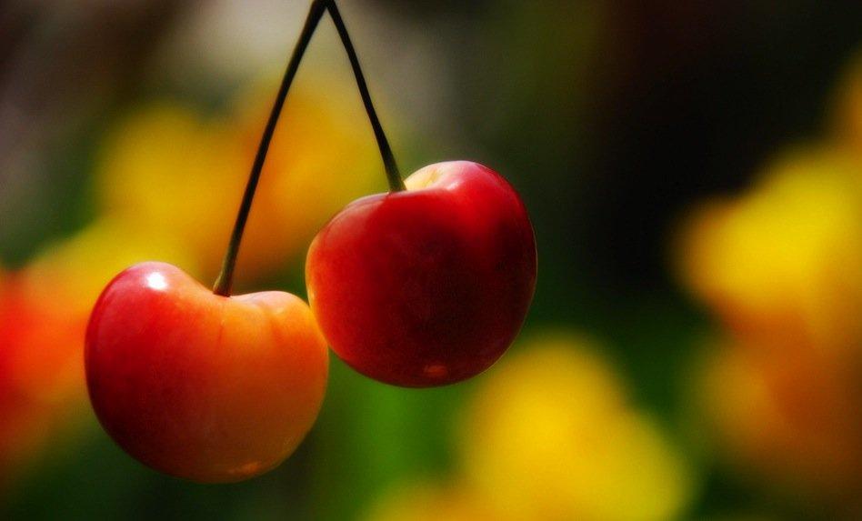 cherry-cherry, французская булочка с косточками